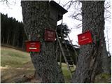 podljubelj - Dom na Kofcah mountain hut