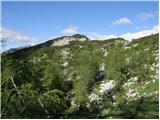 Debeli vrh nad Lipanco