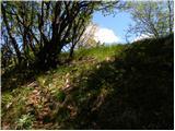Planinski dom pod Ježo - jeza