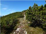 Kravji vrh / Kuhberg