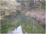 Izvir Ljubljanice (Retovje)