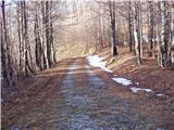 Kozarnice - srednji_golak