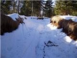 Koča na Pesku - ribniska_koca