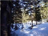Ribniška koča - lovrenska_jezera