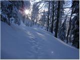 Planina pod Golico - Belska planina (Svečica)