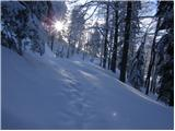 Planina pod Golico - Struška