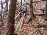 Povlje - krnicarjeva_koca_na_planini_javornik
