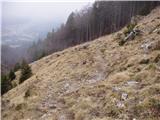 Povlje - velika_poljana