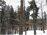 Begunje - tomceva_koca_na_poljski_planini