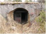 Velika vrata - mala_plesivica