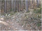 Idrija - hleviska_planina