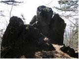 Kamnje - veliki_modrasovec