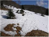 Kampelc - celkov_vrh
