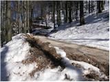 Kampelc - javornik_nad_crnim_vrhom