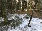 Bresternica (spodnji Rušnik) - zavcarjev_vrh