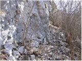 Vitovlje - caven