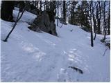Furlanovo zavetišče pri Abramu - suhi_vrh_nanos
