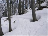 Strane - suhi_vrh_nanos