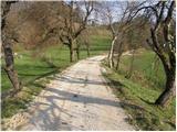 Košnica - Hom nad Celjem