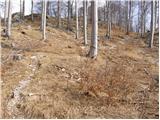 Lokve - poldanovec
