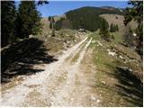 Planina pod Golico - hruski_vrh
