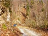 Konec ceste - veliki_rogatec_veliki_rogac