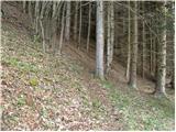 Dolina potoka Žep - Veliki Travnik
