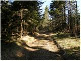Dolina potoka Žep - veliki_travnik