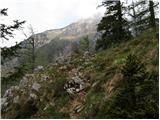 baselj - Planina Kališče