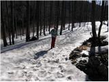 Platak - snjeznik