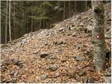 Grahovše - planina_zgornja_konjscica
