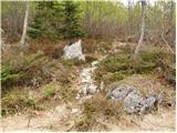 Gozd Martuljek - bivak_pod_spikom
