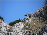 Planina Blato - jezerski_stog