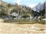 Stara Fužina - planina_pod_miselj_vrhom