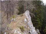 Venetski hrib/Windische Hohe - kobesnock