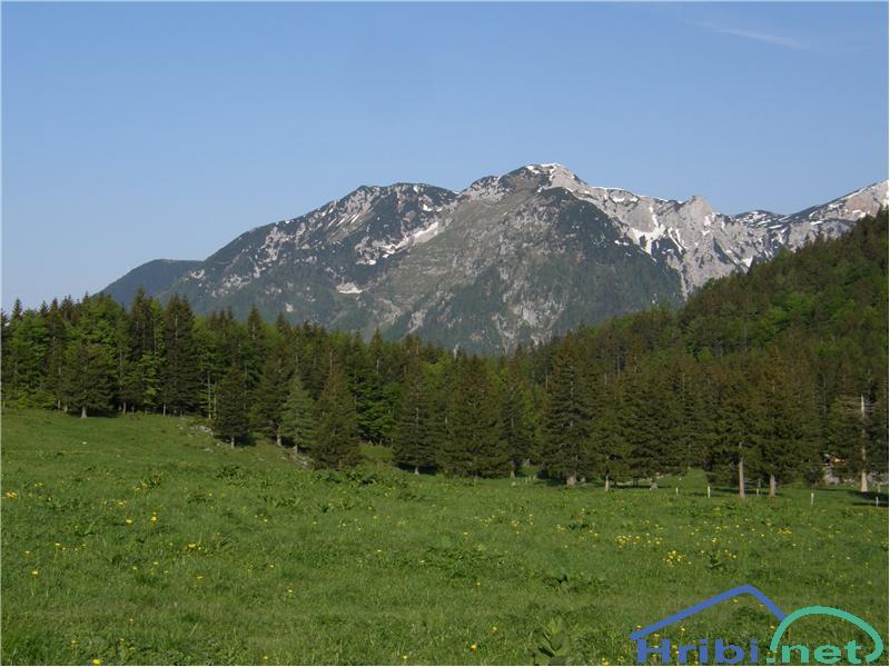 Kraljev hrib - Koritni vrh (Velika planina) - Slika - 44909Pogled proti Mokrici.