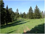 Kraljev hrib - gradisce_velika_planina