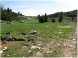 planina_dol - Koritni vrh (Velika planina)
