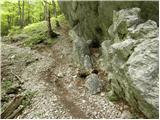 Kraljev hrib - rzenik