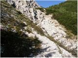 jekarica - Bašeljski vrh