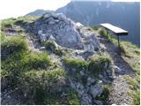 Jekarica - baseljski_vrh