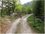 Ravne - planina_dovska_rozca