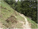 ravne - Rosenbachsattel/Rožca