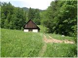Dovje - planina_dovska_rozca