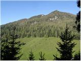 Bistra - planina_javorje