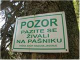 Planina Vodol - planina_javorje