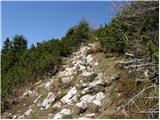 Planina Loka - Velika Raduha