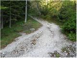 2. serpentina vršiške ceste - Visoki Mavrinc