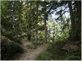 Koča na Gozdu - Visoki Mavrinc