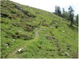 Planina Loka - lanez